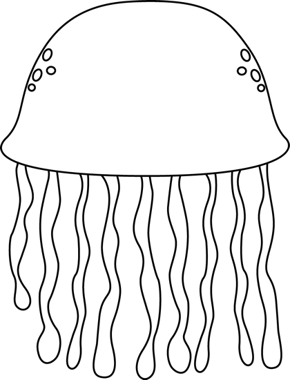 Jelly drawing black and white. Fish graphic transparent