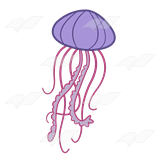 Abeka clip art purple. Jellyfish clipart pink jellyfish picture royalty free download