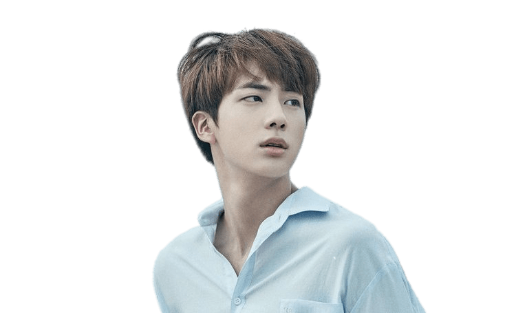 Jin transparent bts