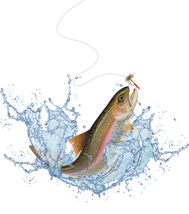 Jumping salmon png. Home youre