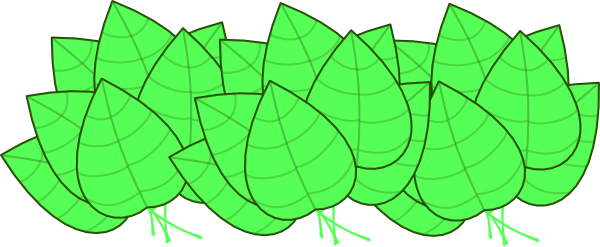 Jungle leaves png. Clipart clip art library