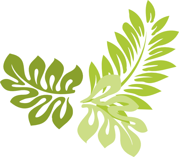 Jungle clipart jungle foliage. Png leaf transparent images
