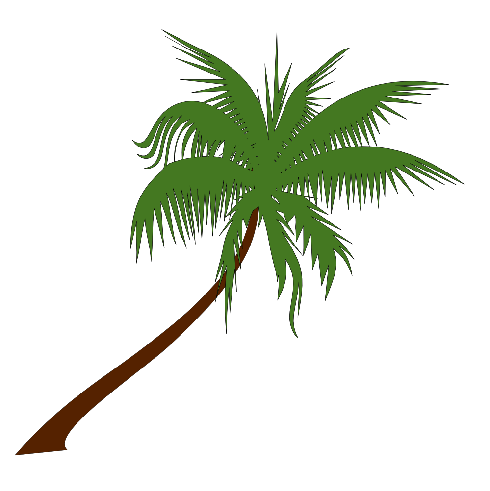 Coconuts vector animated. Palm tree beach sunset