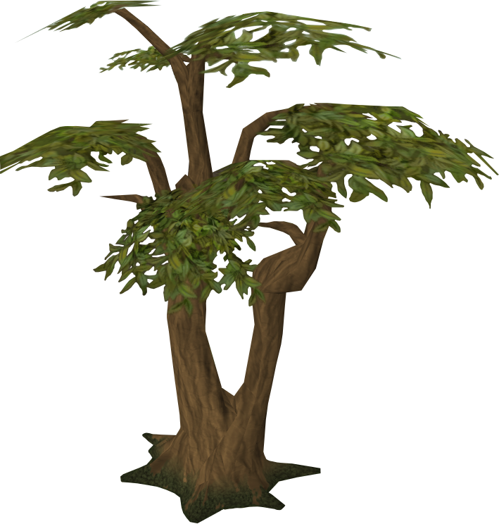 pine tree clip art png