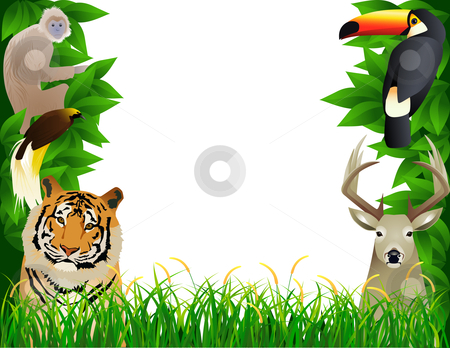 Jungle clipart wild jungle. Tropical stock vector illustration