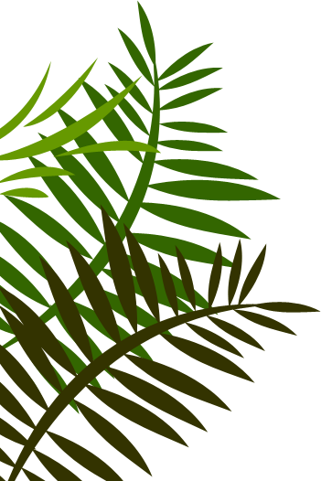 Jungle leaves png. Left