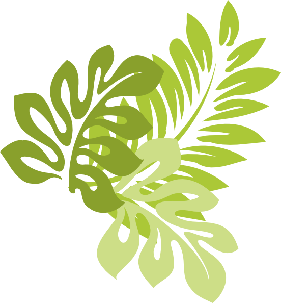 Jungle leaves png. Image animal jam clans