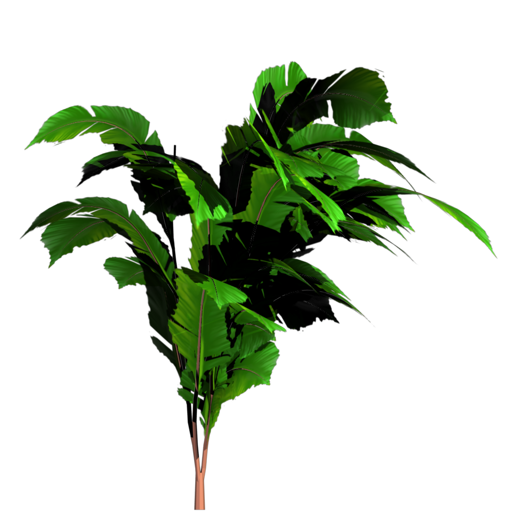 Jungle plant png. Tree transparent image mart