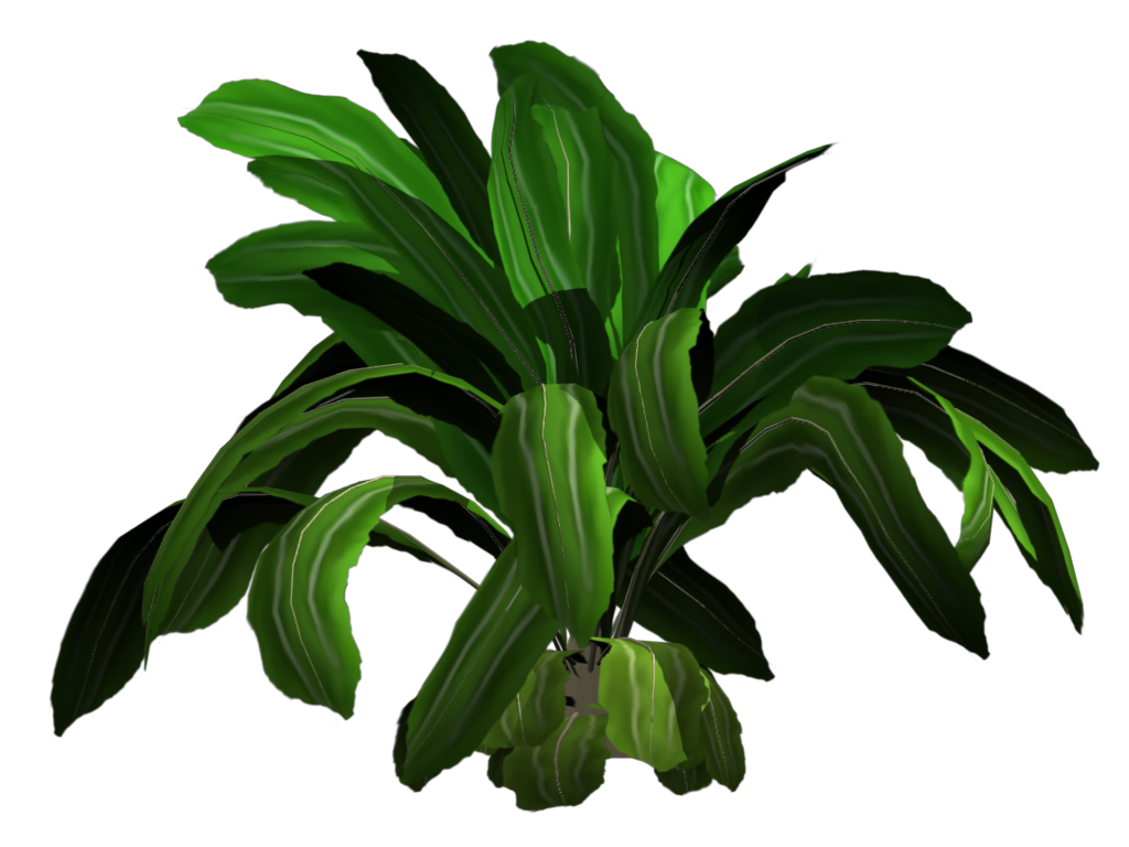 Jungle plants png. Greenhouse blender for architecture