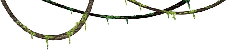 Jungle vine png. Transparent mart