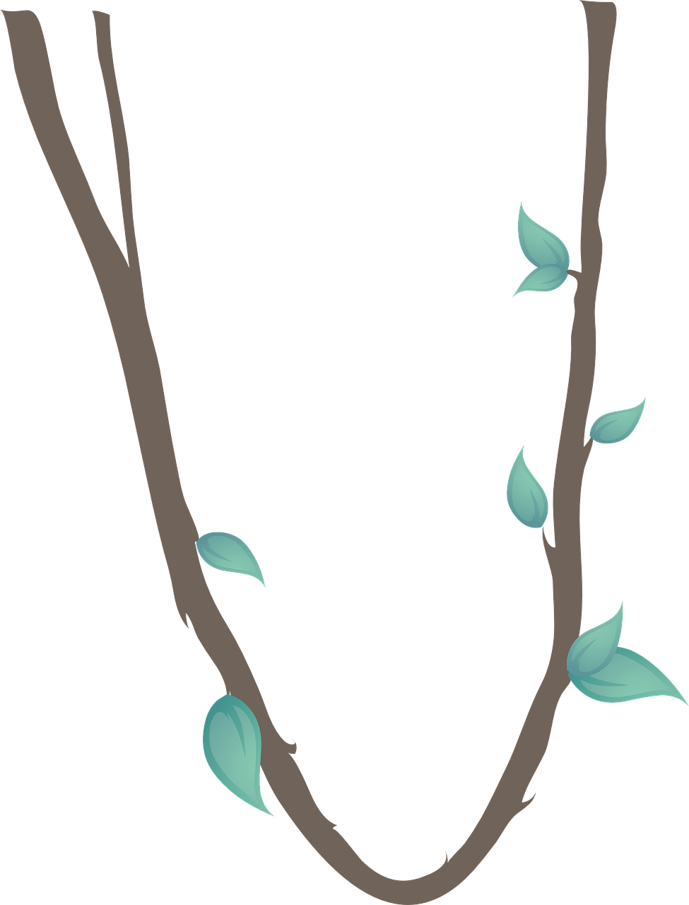 Jungle vines png. Collection of clipart