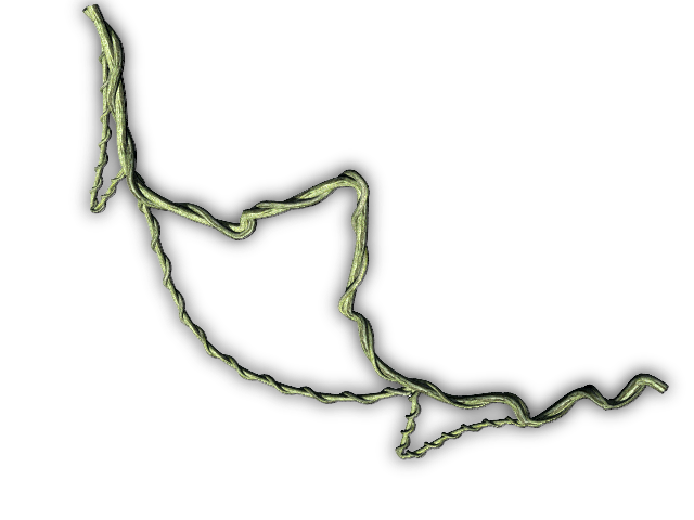Jungle vines png. Index of mapping terrain