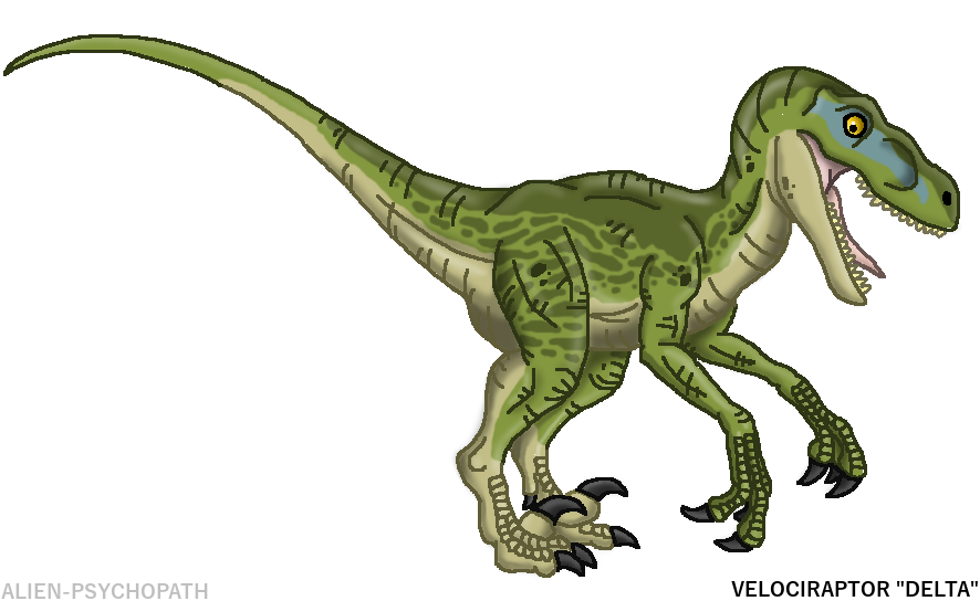 Jurassic world raptor png. Squad delta by alien