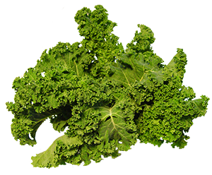 Kale transparent. Is there in the