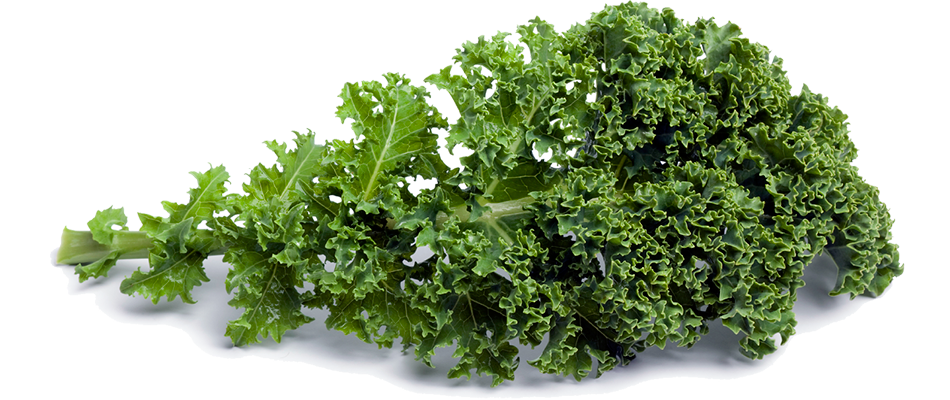Kale transparent background. Png images free download picture royalty free stock