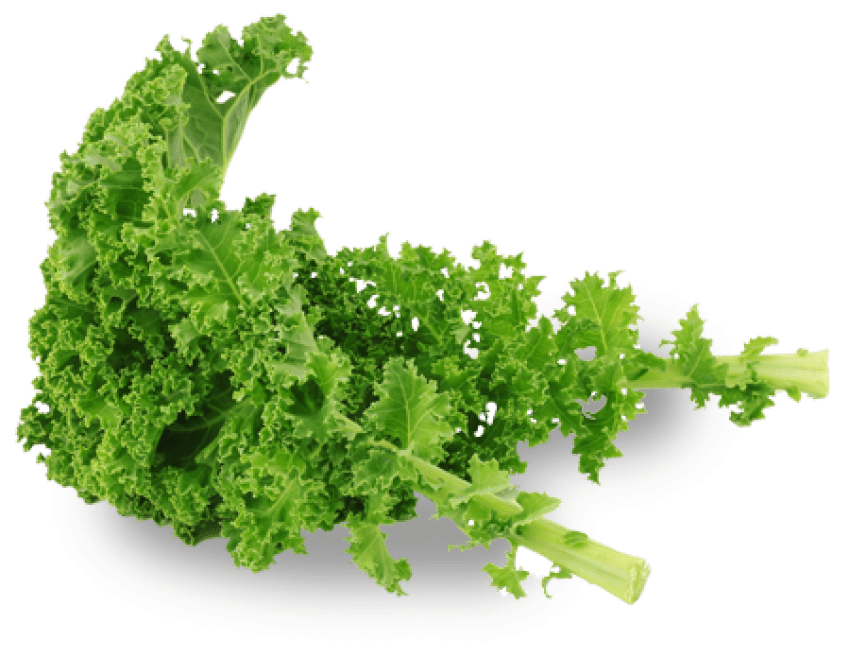 Kale transparent borecole. Png free images toppng