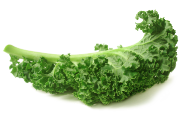 Kale transparent curly.