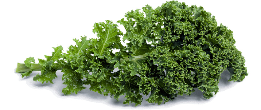 Kale transparent green. Png free images toppng