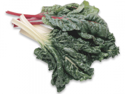Kale vector leafy. Leaves vegetables silverbeet