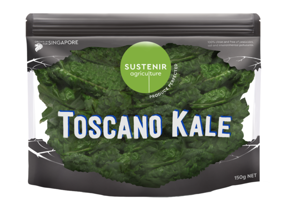 Kale vector plant. Toscano product listing image