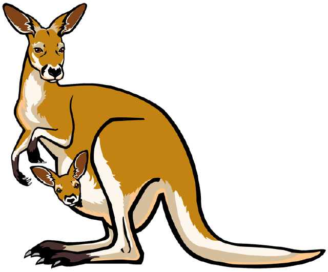 Kangaroo clipart two. The top best blogs