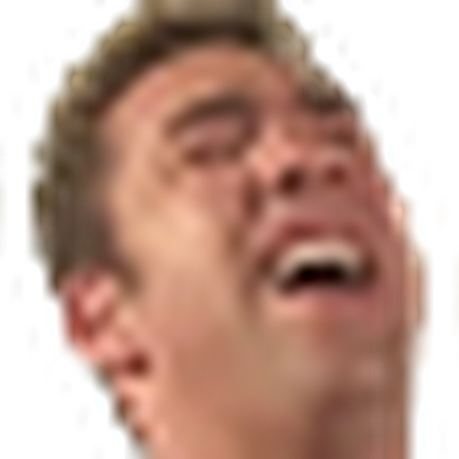 wutface emote png