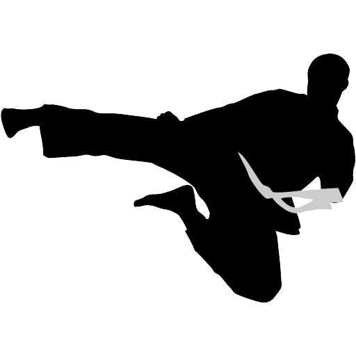 Karate silhouette png. Transparent stickpng