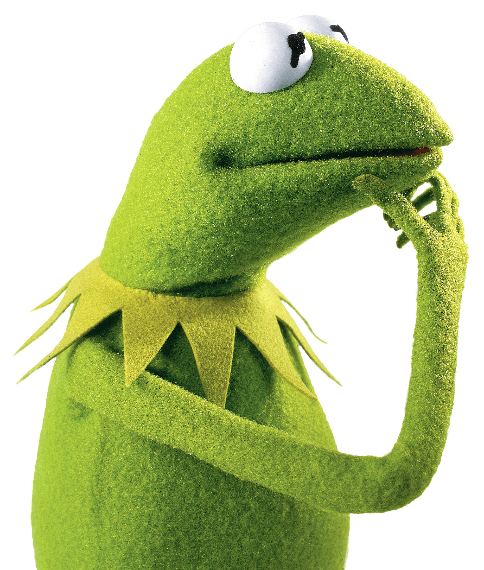 Kermit tea png. The frog thinking transparent