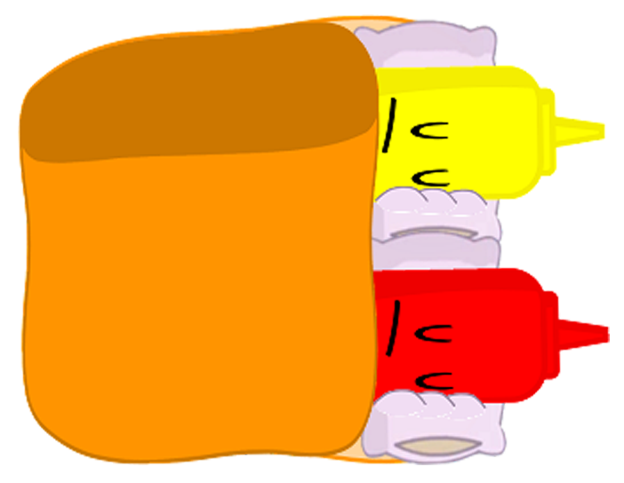 Ketchup and mustard png. Image s object shows