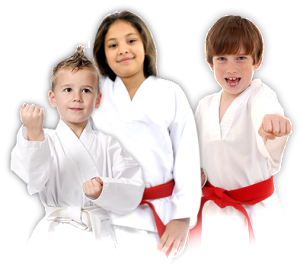 kids transparent taekwondo