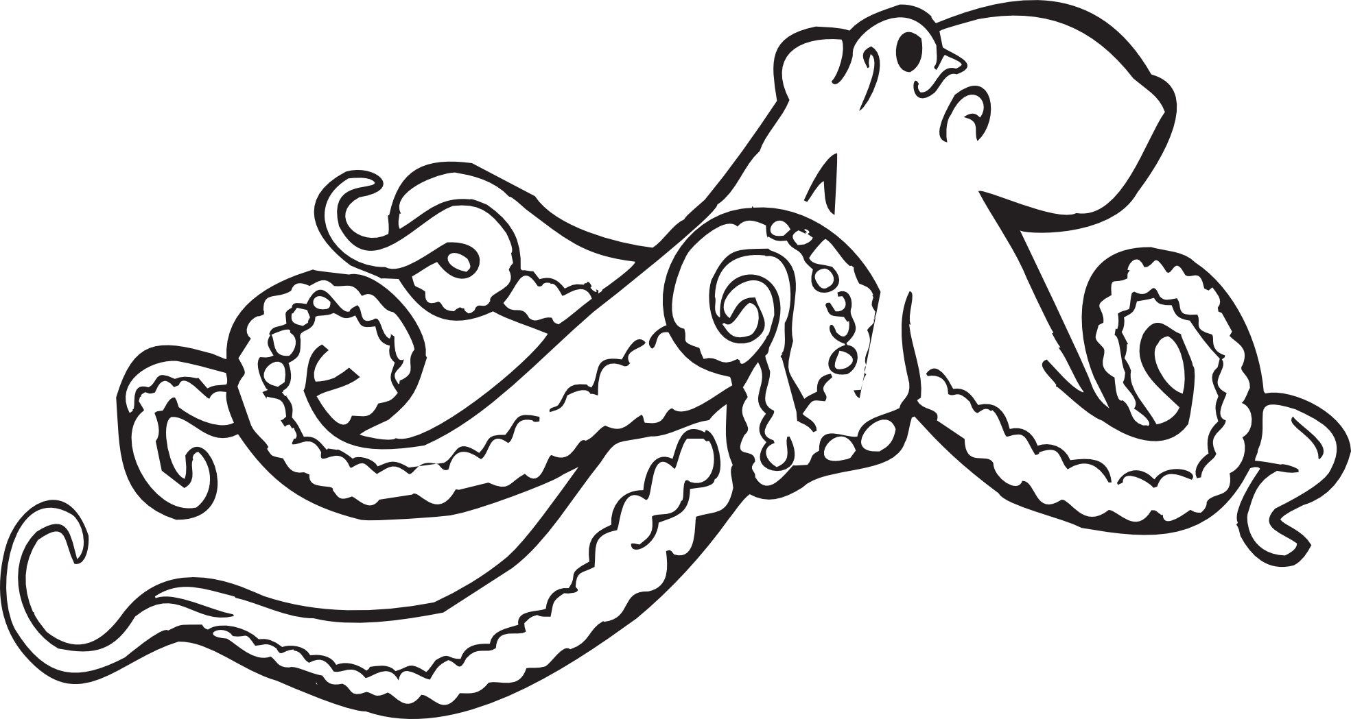 Cool black and white. Scholarships drawing octopus graphic black and white stock