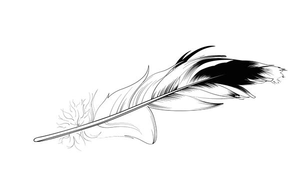 Feather on behance initial. Kinetic drawing sketch svg stock