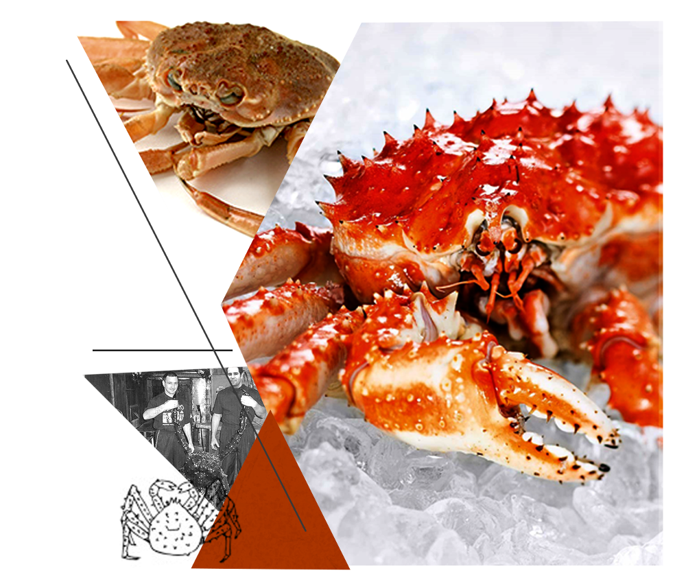 King crab legs png. Products arctic its a