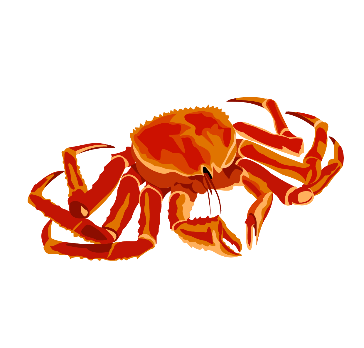King crab png. Red clip art transprent