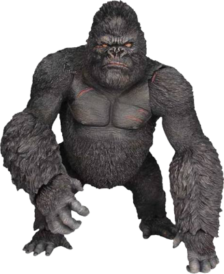 Gorilla clip white background. Free icons and png