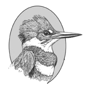Function drawing kingfisher. The belted delaware otsego