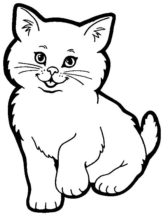 Kitten clipart colorful cat. Coloring pages here is
