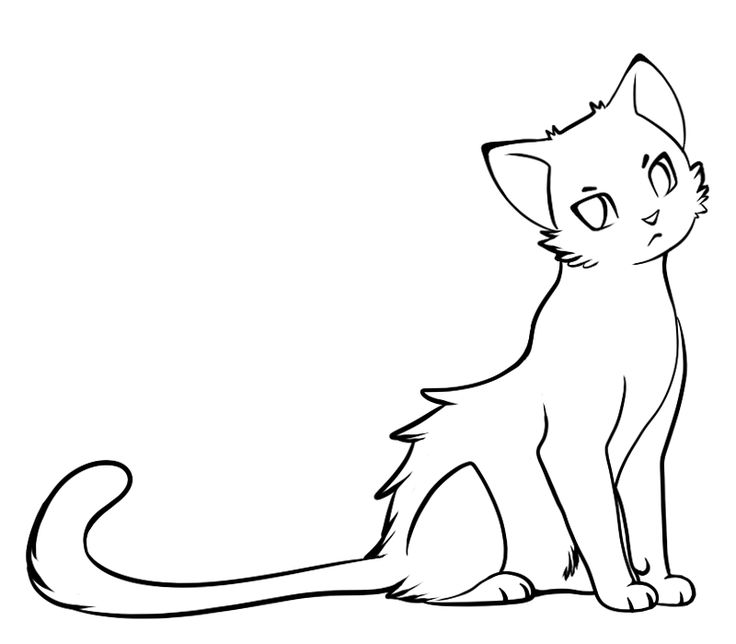 Kittens clipart cat drawing. Best stuff images