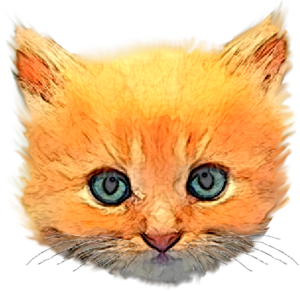 Kitten head png. Free images at clker