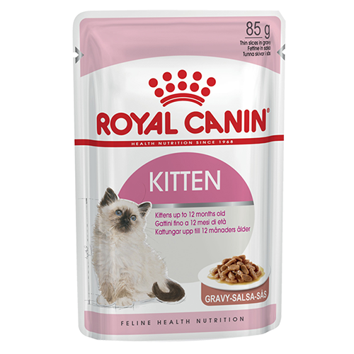 Kittens transparent royal. Canin cat kitten instinctive