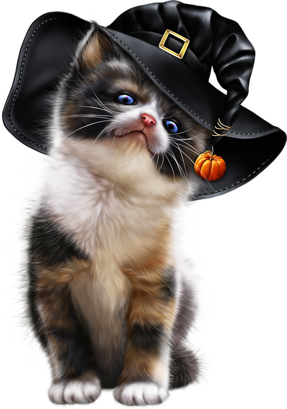 Kittens transparent calico. Blonde witch with kitten