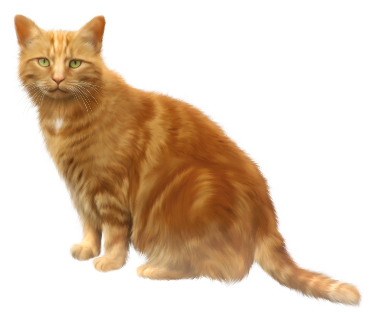 Kittens transparent orange. Cat png clipart gif