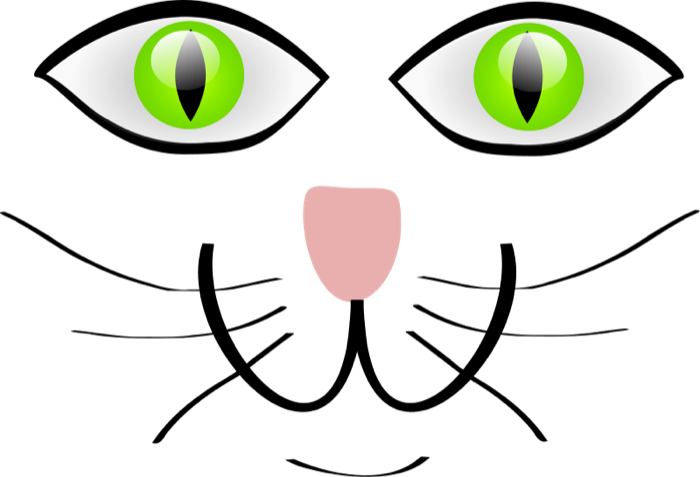 cat mouth png