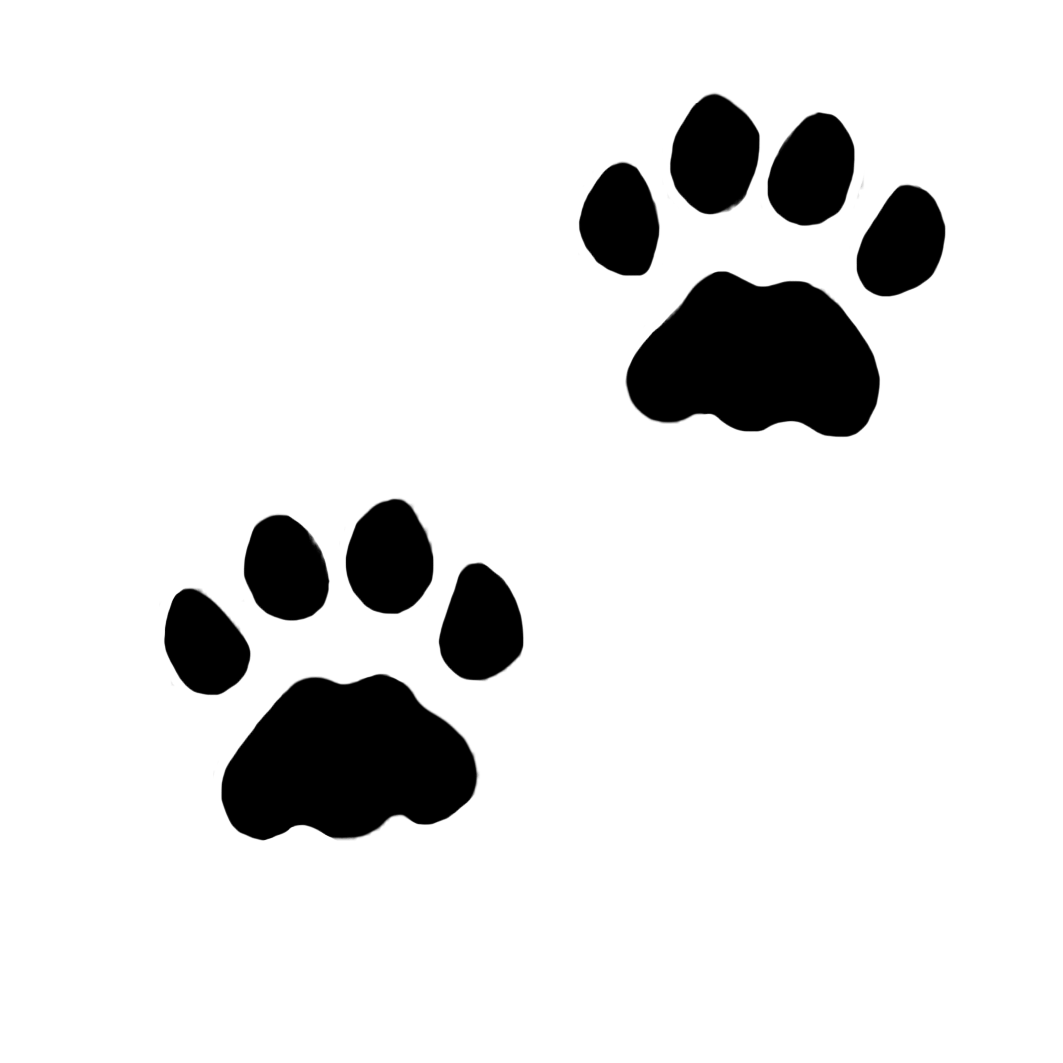 Kitty paw png. I bbbt cats
