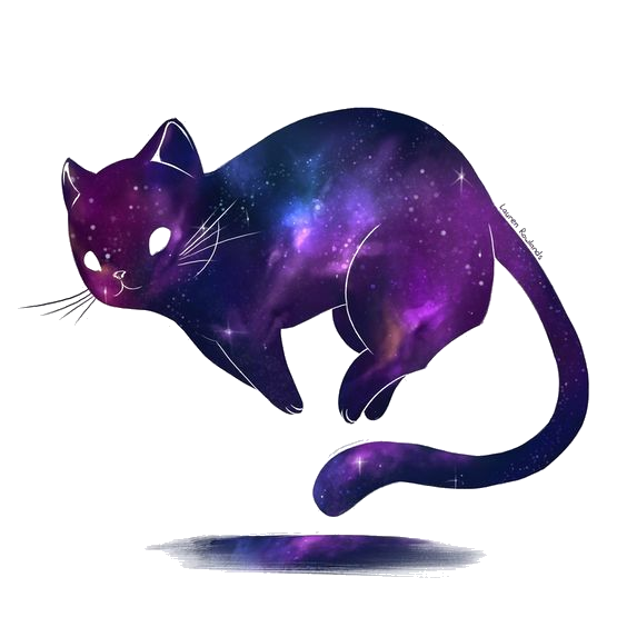 Kitty transparent. Universe png album on