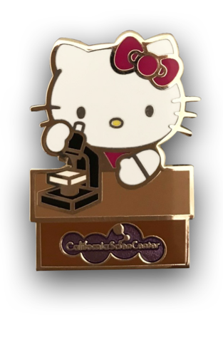 Kitty transparent charm. Hello biologist pin space