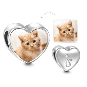 Kitty transparent charm. Soufeel personalize photo cat