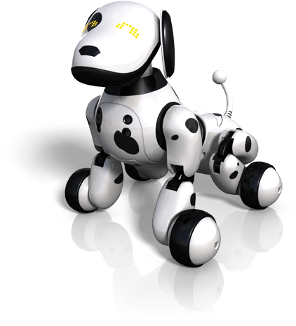 Kitty transparent robot. Support zoomer getting started