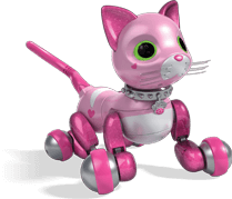 kitty transparent zoomer