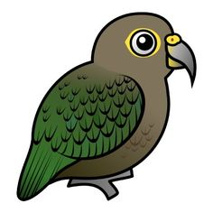Kiwi clipart kea. Our national icon by
